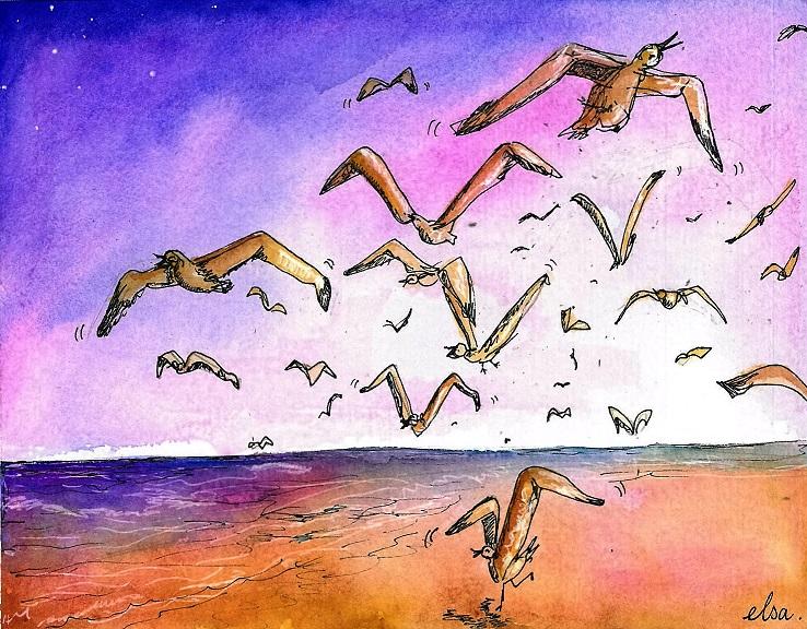 birdsfifty (2)